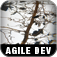 The Art of Agile Development Icon