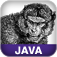 JavaServer Faces Icon