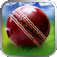 Cricket WorldCup Fever Deluxe Icon