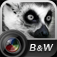 Aisu B&W Camera Icon