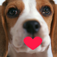 CutePhotos Lite Icon