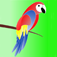 Parrot Breeding Guide Icon