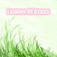 The Leaves Of Grass Icon