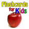 FlashCards: English Russian Portuguese Edition Icon