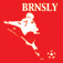 Football Fans – Barnsley Icon