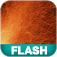 Learning Flash CS4 Professional Icon