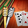 Aces® Cribbage Icon