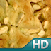 The Virginia Housewife Recipes HD Icon