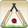 Swing Cricket 2 Icon