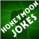 Honeymoon Jokes Icon