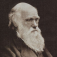 Charles Darwin Collection (Voyage of Beagle,Origin of Species, Descent of Man) Icon