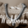 i-Wishbone Icon
