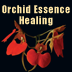 Orchid Essence Healing Icon