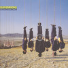 Mr. Time - The Alan Parsons Project