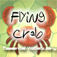 Flying Crab Icon