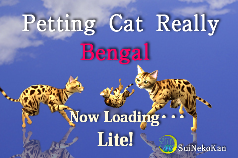 Bengal Petting Cat 3D REAL Lite Screenshot