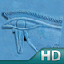 The Religion of Ancient Egypt HD Icon