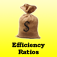 Efficiency Ratios Calculator for CPAs, Investment Bankers, Finance Professionals, and MBAs Icon