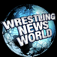 Wrestling News World Icon