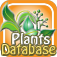 Plant Taxonomy Database
