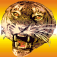 Higher Order – Free The Tiger Icon