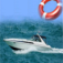 Speed Boat Safety Guide - Everything You Need To Know!