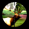 3D Hunting™ Trophy Whitetail Icon