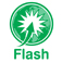 Ready Flash Icon