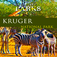 Nature Parks – Kruger National Park Travel App Icon