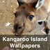 Kangaroo Island Wallpapers Icon