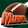 Miami Fan (Reflect7) Icon