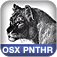 Essential Mac OS X Panther Server Administration Icon