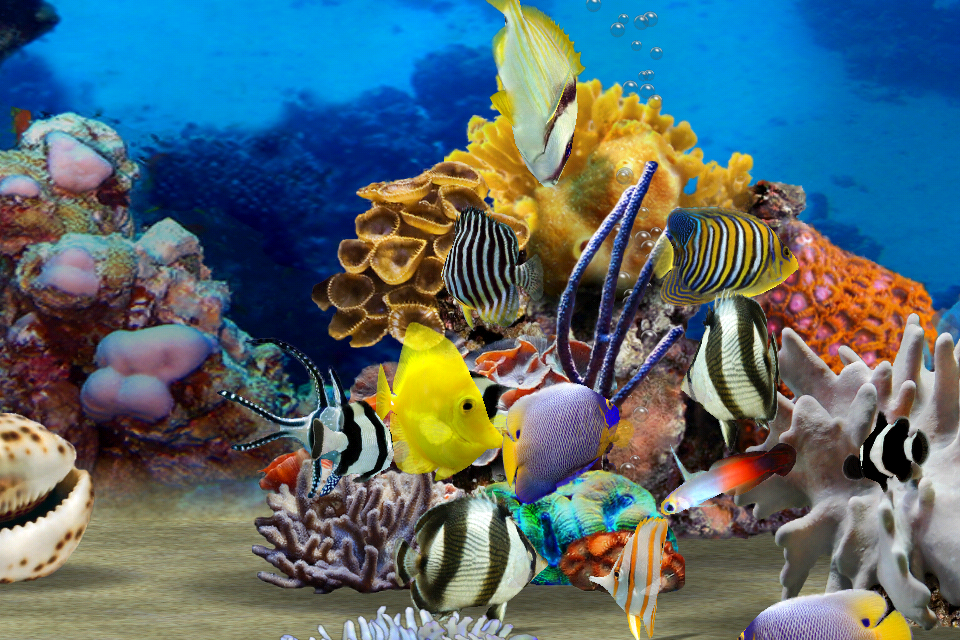 MyReef 3D Aquarium Screenshot