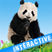 Animals' world – Pictures of animals in high definitiion, sounds and interactive features Icon