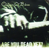 Are You Dead Yet - Children Of Bodom