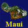Virtual Maui Guide Icon