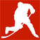 Detroit Hockey News and Rumors Icon
