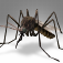 Mosquitoes Killer Icon