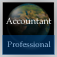 Accountant Handbook (Professional Edition)