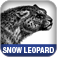 Mac OS X Snow Leopard Pocket Guide