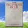 The Thunder Bird, by B.M. Bower Icon