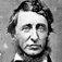 Henry David Thoreau Book Collection