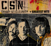WASTED ON THE WAY - AND NASH CROSBY STILLS