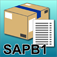 SAP B1 Inventory item information