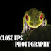 Close Ups Photography Icon