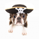 Pirate Dog Slide Puzzle Icon
