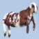 Alpha Goat Icon