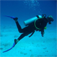 The Best Scuba diving and Snorkeling locations Icon