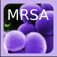 SuperBug Icon