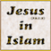 The islamic view of Jesus ( P.B.U.H ) Icon